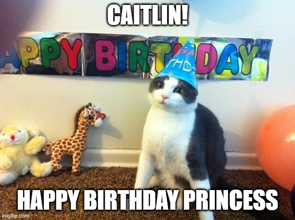 Image Tagged In Cat Birthday Cats Memes Funny Happy Birthday Funny Cat Memes Imgflip