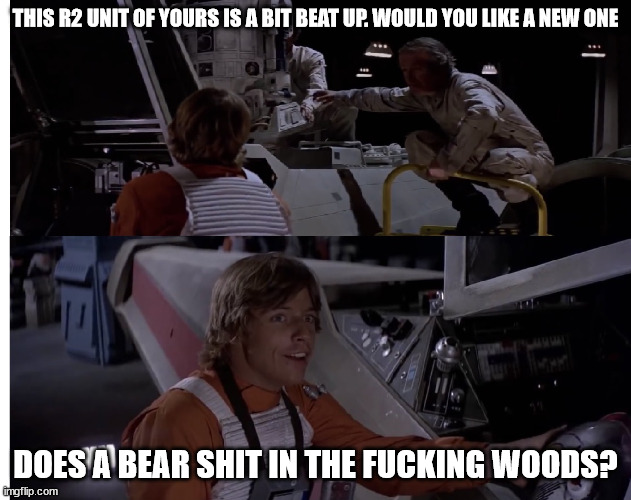THIS R2 UNIT OF YOURS IS A BIT BEAT UP. WOULD YOU LIKE A NEW ONE; DOES A BEAR SHIT IN THE FUCKING WOODS? | made w/ Imgflip meme maker