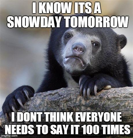 Snowday Bear
