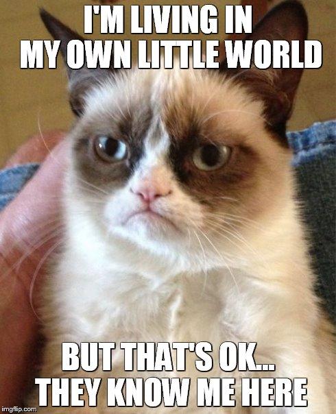 My Own World Imgflip