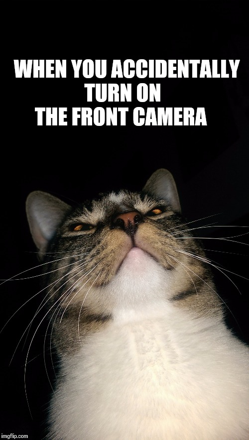 Front Camera And Go Memes