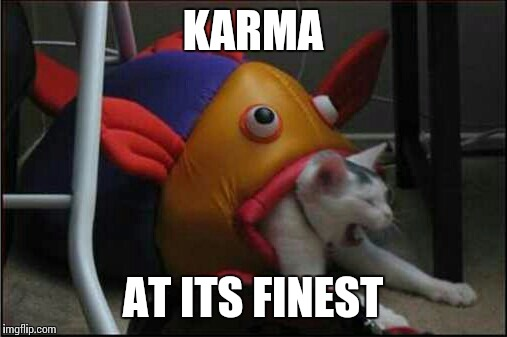 Reddit Alien Memes Quickmeme