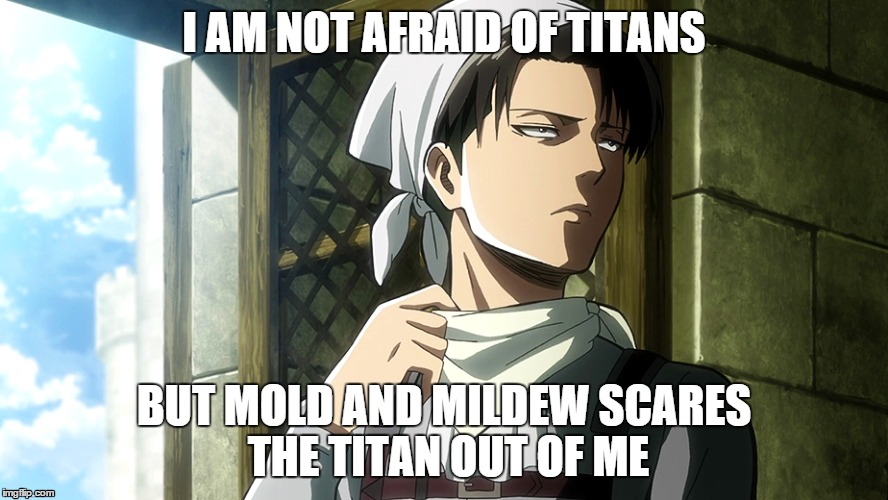 Mikasa Levi Cleaning Funny Rivals Characters Attack On Titan