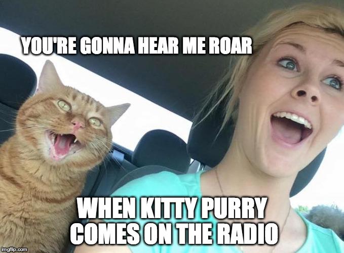 I Love Top Furry Radio Imgflip