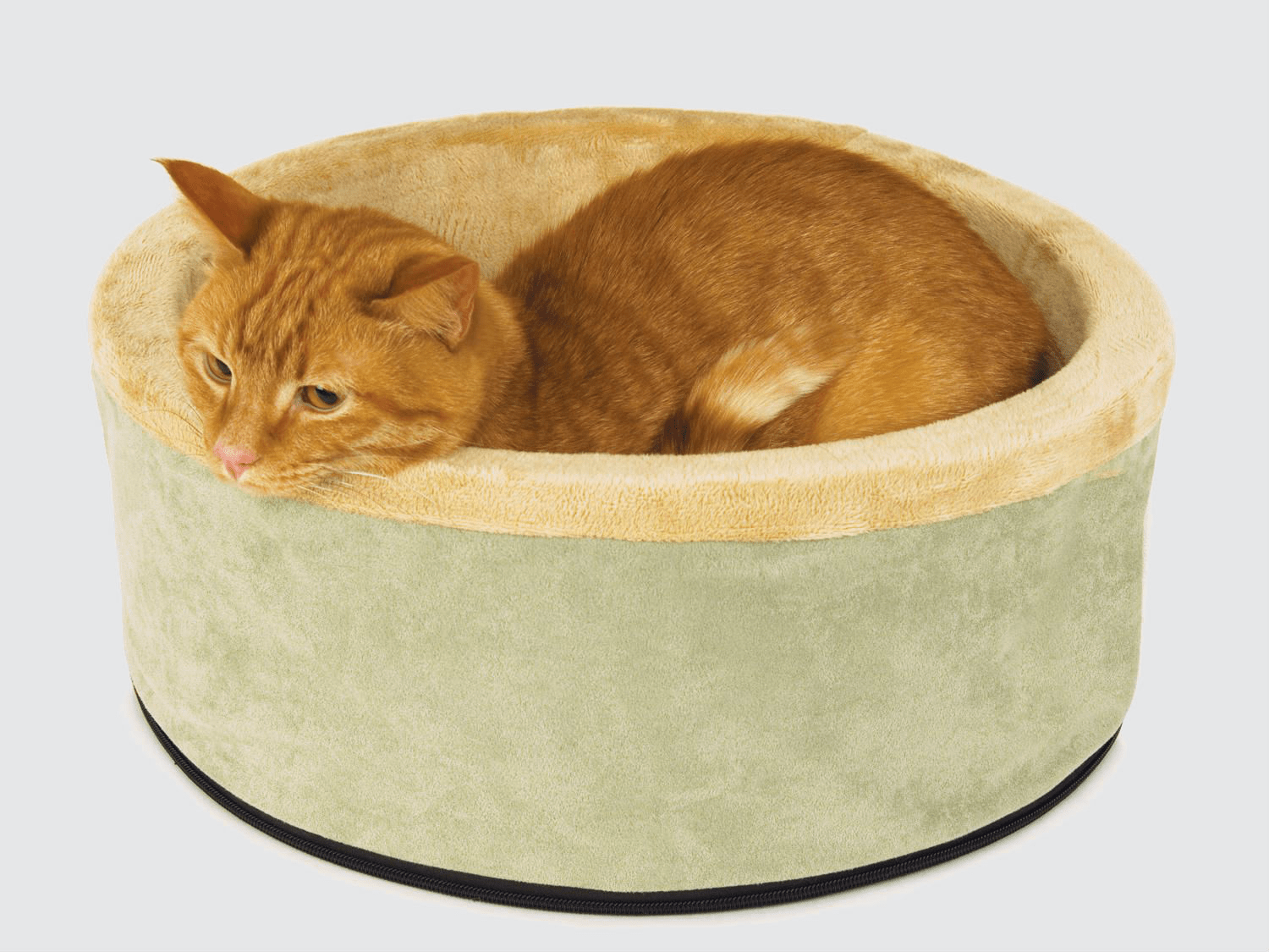 Best Cat Beds In 2019 Petfusion Aspen K H Armarkat And More Business Insider