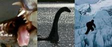 Chupacabra, Nessie, Yeti: Polowanie na tajemnicze potwory