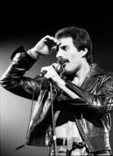 Freddie Mercury będzie miał ulicę w Warszawie? Mieszkańcy zbierają podpisy