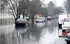 Wyciek zanieczyszczonej wody na Targówku
