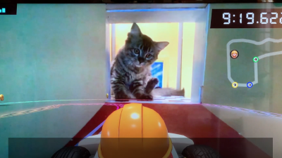 Cats Vs Mario Kart Live: Home Circuit