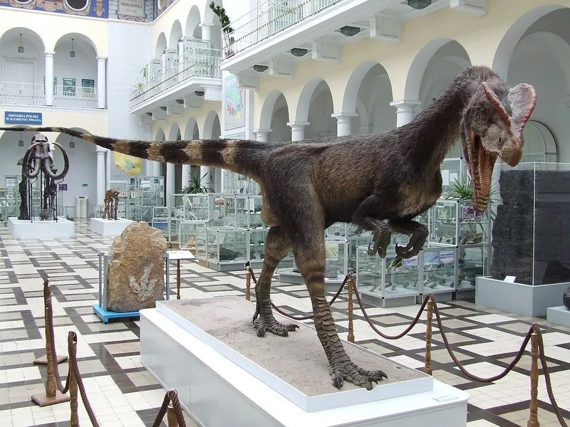This is the Most Beat Up Dinosaur Ever Discovered