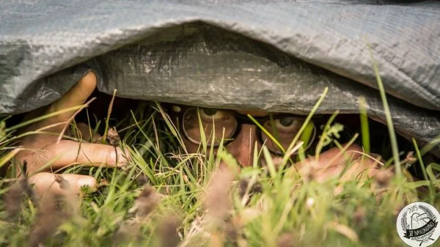 Quick Question How Does One Prepare For The Hide And Seek World Championship