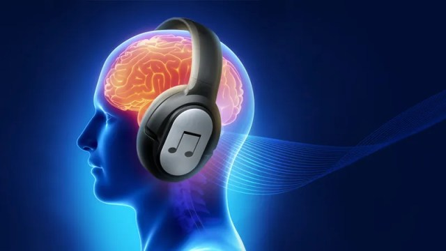 Image result for music and brain