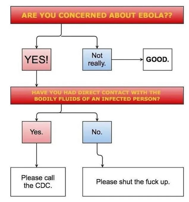 Should You Be Worried About Ebola? A Helpful Chart.