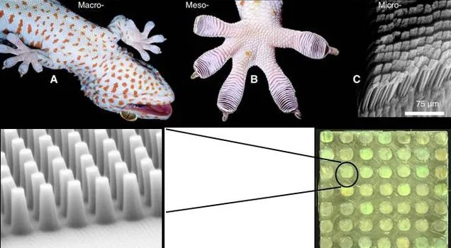 DARPA diseña un tejido para guantes que permite escalar paredes lisas