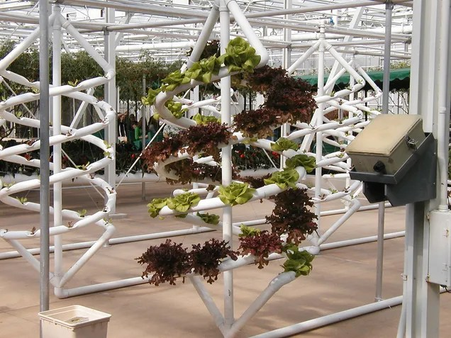 The High Tech Farms Where Our Future Food Will Grow in Nothing But Air