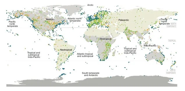 Half of Our Planet's Wildlife Is Gone. Here's Why.