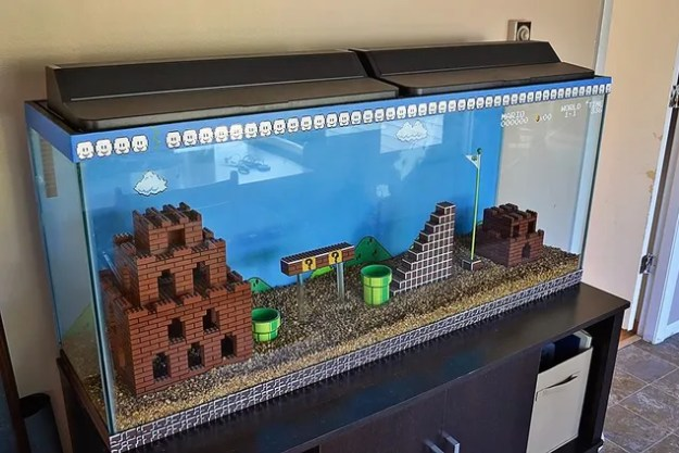 Super Mario Bros aquarium DIY