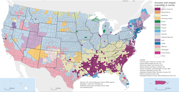 A County by County Map of America s Ethnic Roots The Washington Post has come out with a map that shows the dominant racial  ancestry in the United States  3144 counties  Some results are not  surprising