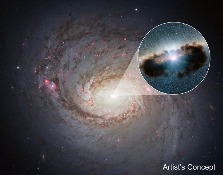 We Finally Know What's Inside These Mysterious Black Hole Clouds