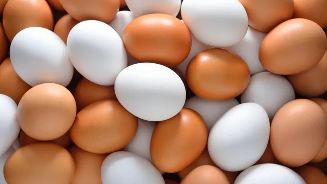 What's the Real Difference Between Brown and White Eggs?