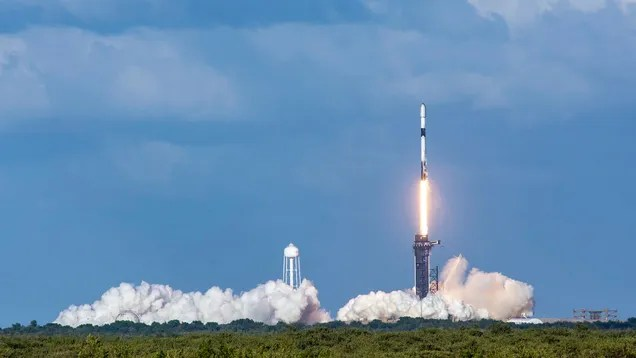 b294fd84cc601383b2f28ce41feec571 Watch Live and Wave Goodbye to the Baby Squid as They Launch to Space | Gizmodo