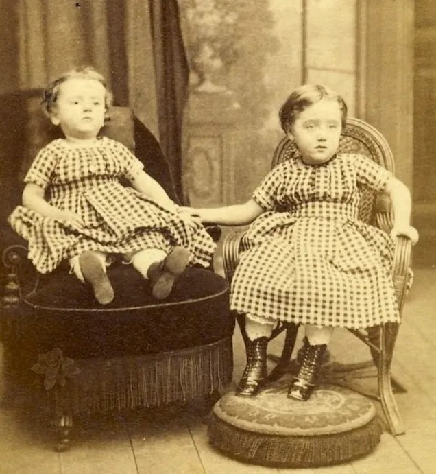 Le XIXème Siècle Et L'art Délicat De La Photographie POST