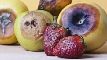 Image result for rotten fruit