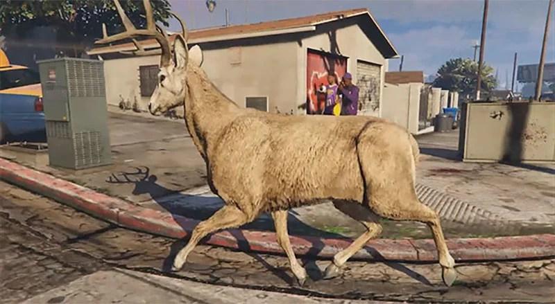 Modded Deer Is Running Buck Wild In GTA V Kotaku Australia