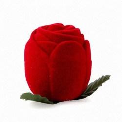 Кольцо из розы