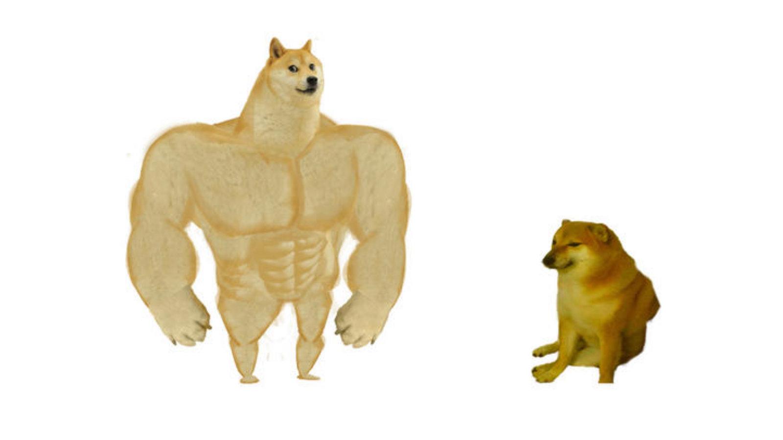 Angry Doge Meme Generator Imgflip Doge Meme On Me Me
