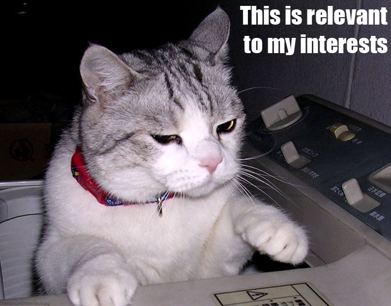 Cats And The Internet Wikipedia