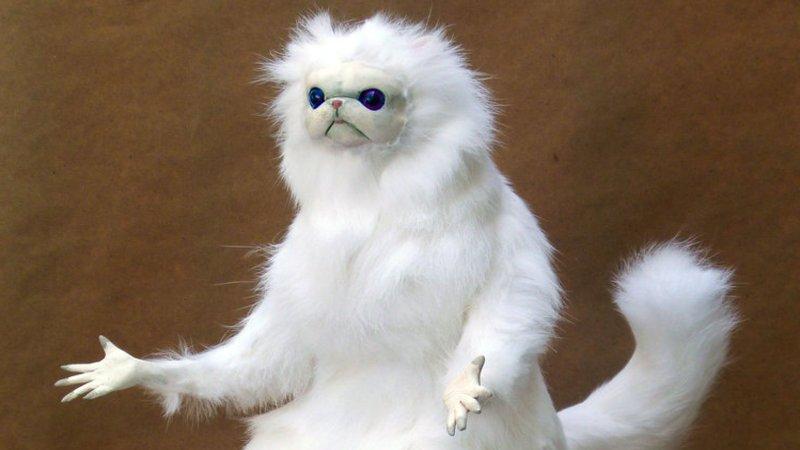Amazon Com Grumpy Cat Funny Cat Meme Art Print Handmade