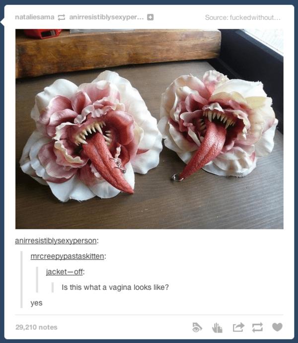 tumblr vagina photos
