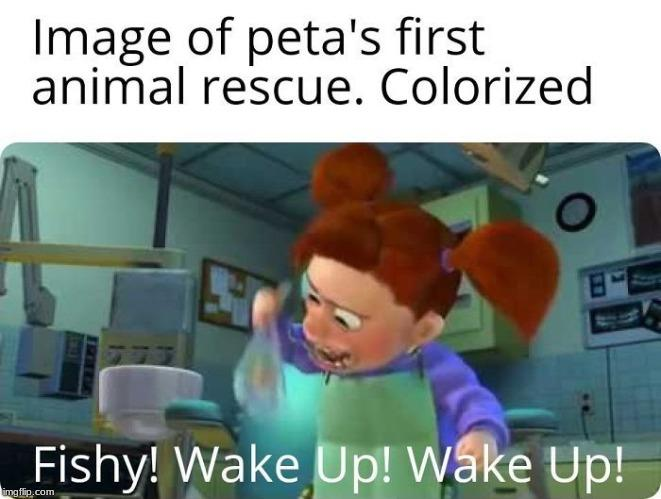 Wake Up Fishy People For The Ethical Treatment Of Animals Peta