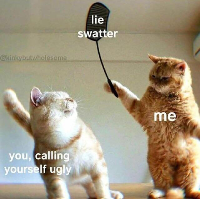 Lie Swatter R Wholesomememes Wholesome Memes Know Your Meme
