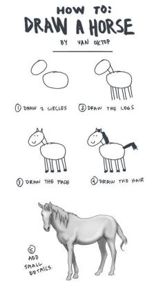 HoW TO: DRAW A HORSE BY VAN oKTOP ) DRAW 2 URCLES ⑦DRAw THE LEE> DRAW THE FR DRAW THE HAIR ADD smA1レ DETRILS Horse white line art black and white mammal text vertebrate horse like mammal cartoon nose horse head wildlife font pack animal joint organism mane drawing