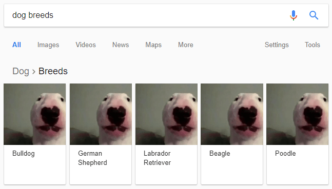 Nelson The Bull Terrier Walter Know Your Meme