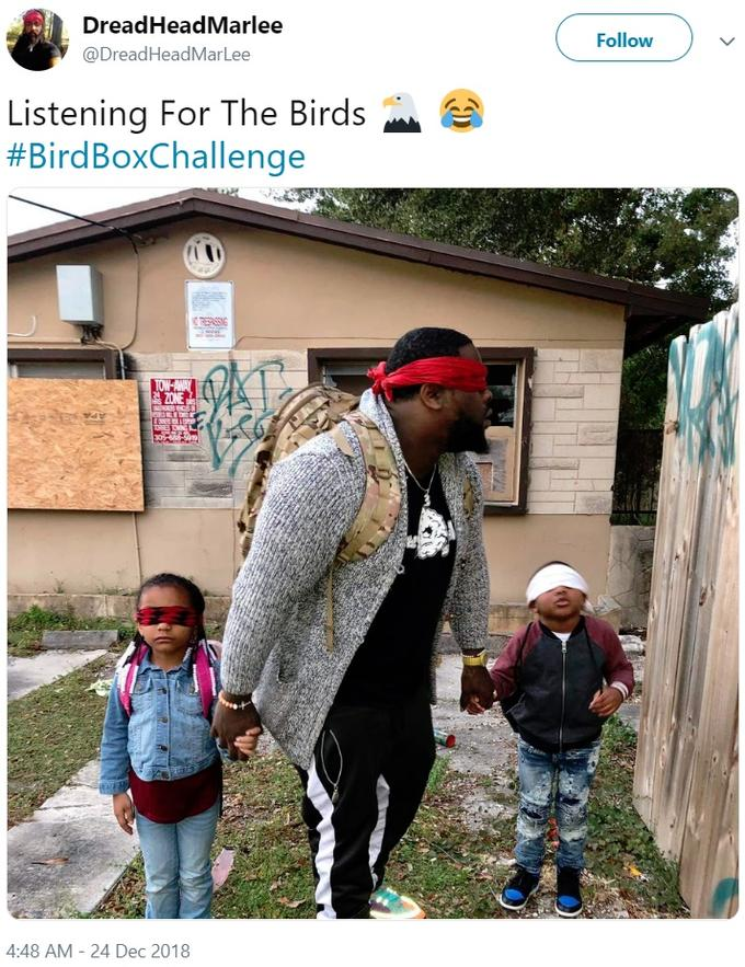 What Is The Bird Box Challenge And Why Netflix Issued A Warning
