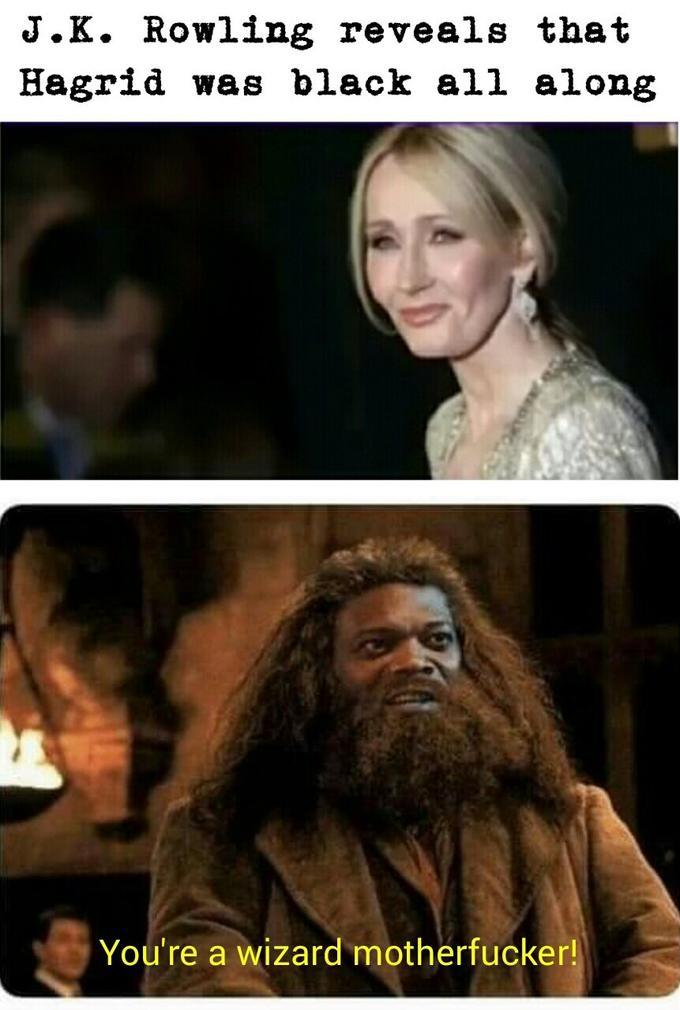 J K Rowling Everyone Memes
