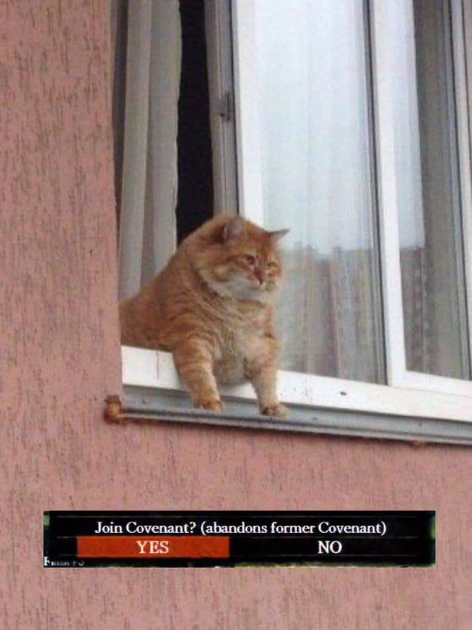 Join Covenant? (abandons former Covenant) YES NO Cat Felidae Small to medium-sized cats Whiskers Carnivore Domestic short-haired cat
