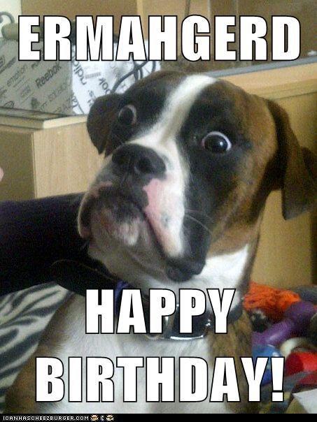 Ermahgerd Happy Birthday Happy Birthday Memes Know Your Meme