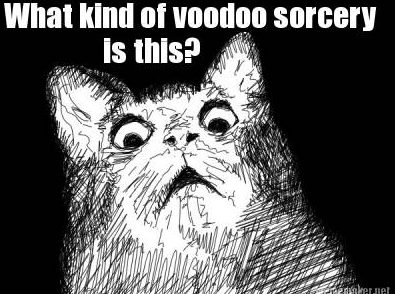 Image result for what the voodoo meme""