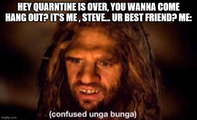 HEY QUARNTINE IS OVER, YOU WANNA COME HANG OUT? IT'S ME, STEVE. UR BEST FRIEND? ME: (confused unga bunga) imgflip.com Hair Facial expression Photo caption Forehead Hairstyle Beard Human Facial hair Chin Internet meme