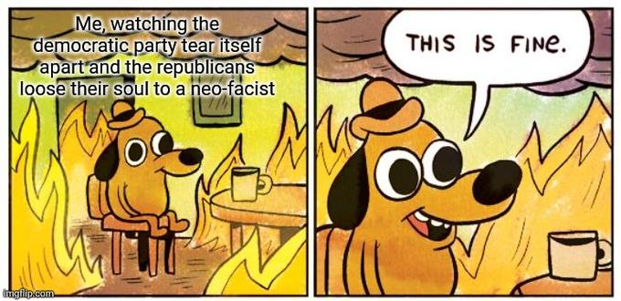 Me, watching the democratic party tear itself apart and the republicans loose their soul to a neo-facist THIS IS FINE. ingflip.com Cartoon Animated cartoon Comics Fiction Line