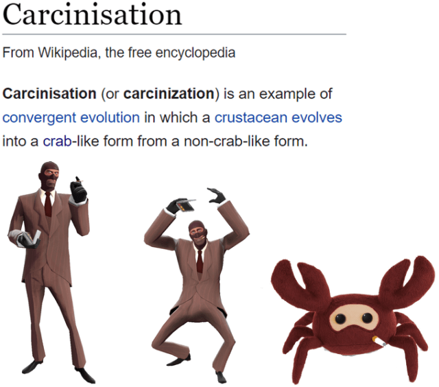 Carcinisation From Wikipedia, the free encyclopedia Carcinisation (or carcinization) is an example of convergent evolution in which a crustacean evolves into a crab-like form from a non-crab-like form. Team Fortress 2 Counter-Strike: Global Offensive Garry's Mod Human