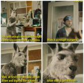u/marquis orlas See, with enough money and the right doctors you can become a kangaroo. Was it a rough surgery? HOURT Well, at first they just had me sit down and sign all the waivers. After that it got difficult. Organism Vertebrate Snout Jaw Adaptation Terrestrial animal Grey Wildlife Snapshot Fur