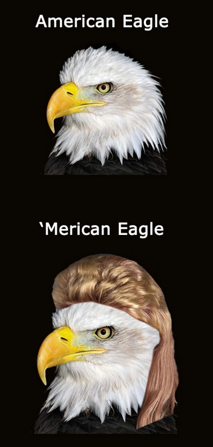 American Eagle Name Puns Know Your Meme