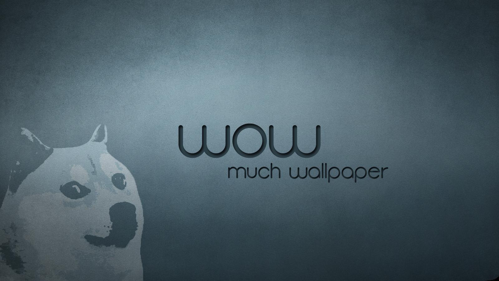 Beautiful Cat Wallpapers Dog Meme Funny Animals Desktop Background