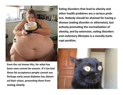 Image result for fat acceptance is wrong memes