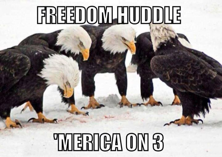 Freedom On Third Down Murica Know Your Meme